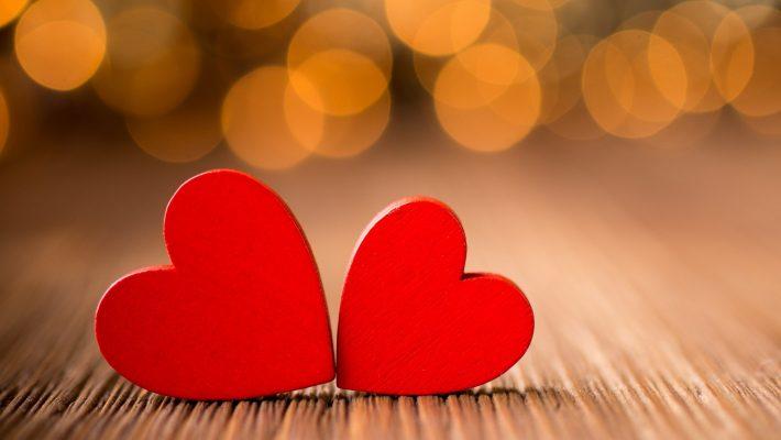Bases biológicas del amor