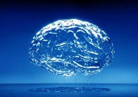 Relación Mente-Cerebro